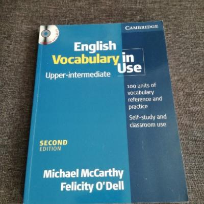 English Vocabulary in Use (McCarthy & O\'Dell) - thumb