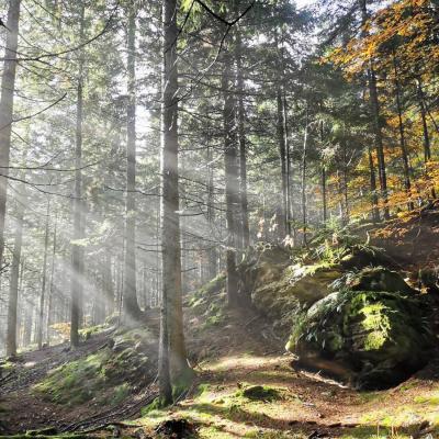 Wandern, Klettern, Zelten, Abenteuer draussen :D - thumb