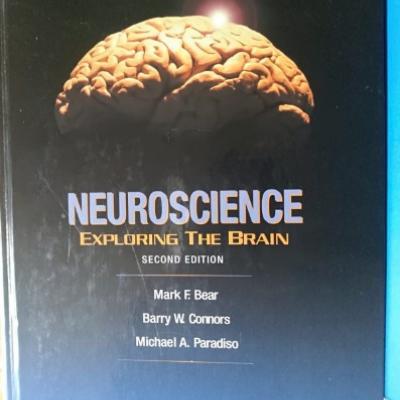 Psychologie Fachbuch - thumb