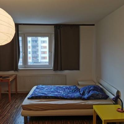 Riesiges 27m2 Zimmer in 3er WG zu vermieten 1220 - thumb