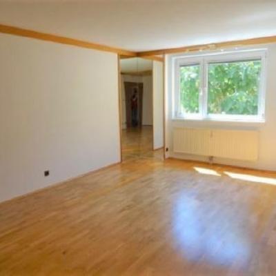 Sonnige, ruhige 3-Zimmer Wohnung (75m²) ZENTRAL - thumb