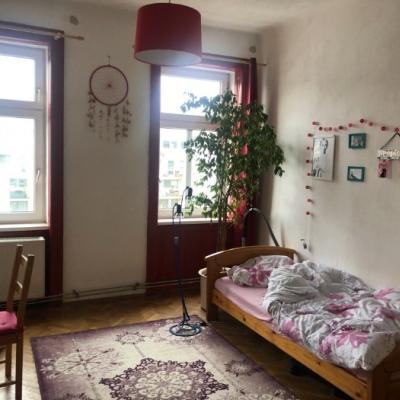 Einzimmerwohnung- Zwischenmiete ab Dez bis Feb - thumb
