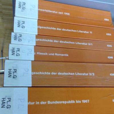 dtv Literaturgeschichte - thumb