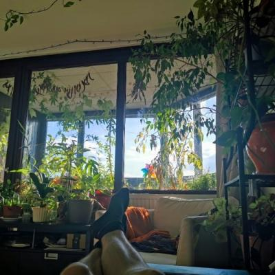 QUEER & GREEN household with the view - thumb