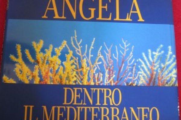 Dentro il Mediterraneo