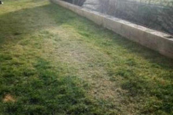2,5 Zi Whg als Hausanteil + Garten + Keller