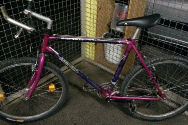 Mountainbike, Fahrrad