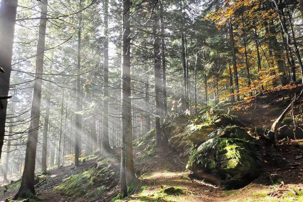Wandern, Klettern, Zelten, Abenteuer draussen :D