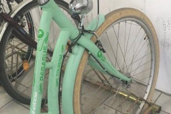 200€ Damen Fahrrad Pegasus Tourina