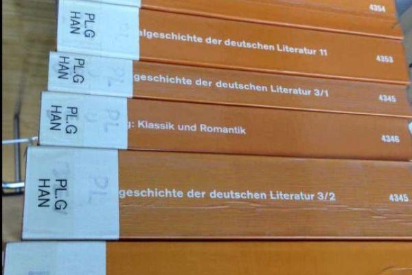 dtv Literaturgeschichte