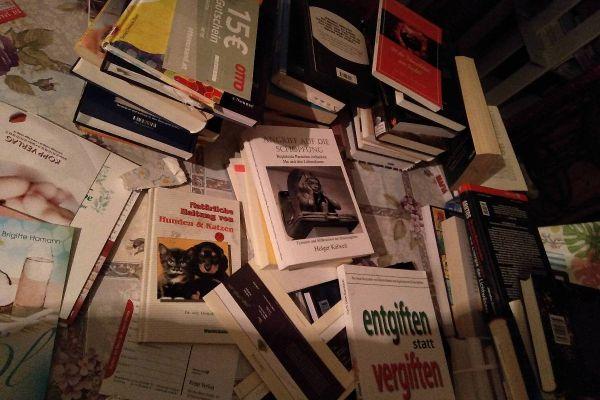 1 Zimmer voll Bücher