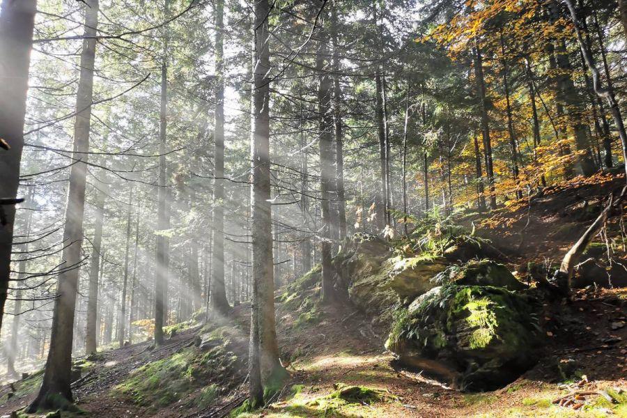 Wandern, Klettern, Zelten, Abenteuer draussen :D - Bild 1